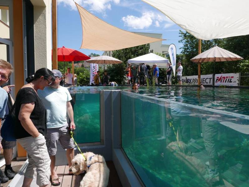 Events und kurse for Goldorfen im teich